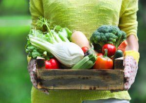 Gemüse kommt in Deutschland eher selten auf den Tisch.