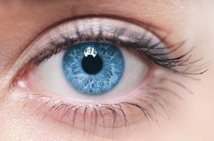 Ein unentzündetes Auge.